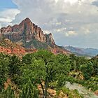 Zion National Park - Utah by Mary Warner