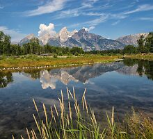 Grand Teton National Park - Wyoming by Mary Warner