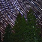Startrails by Scott Canfield