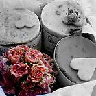 Roses by KateHulme