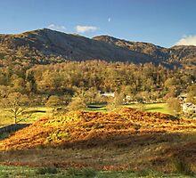 Elterwater Village..The Wider View by Jamie  Green