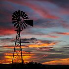 Windmill near Seligman, Arizona by Mary Warner