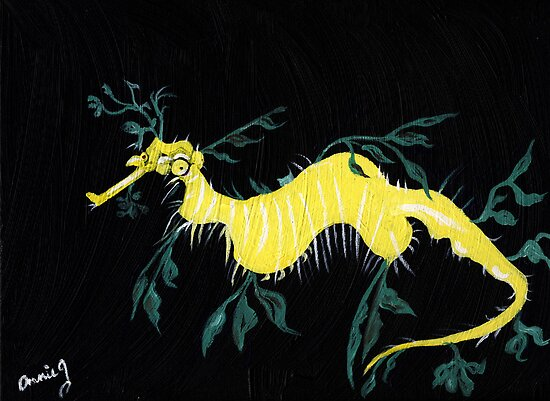 Leafy Sea Dragon by Anne Gitto