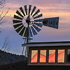 Windmill - Chino Valley, Arizona by Mary Warner