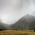 Storm Rolling in at Mount Cook by Christine Smith