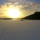 Frozen Loch Lomond by Susan Dailey