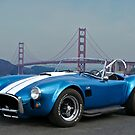 Cobra at the Golden Gate by DaveKoontz