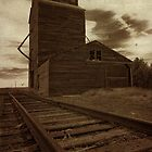 Grain Elevator 3 by Miles Glynn