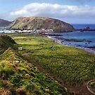 Macquarie Island & the Research Station by Carole-Anne
