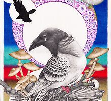 The Unforgiven Pigeon by Immy Smith