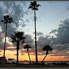 Edgewater Park at Sunset by Mikell Herrick