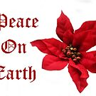 Peace On Earth, 2013 by heatherfriedman