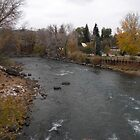 Animas River 01 by jessicacbarker