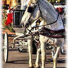 CHRISTMAS CARRIAGE by HanselASolera
