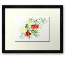 Rowan berry Framed Print