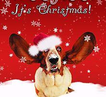Basset Hound WhooHoo I'ts Christmas Greeting Card  by Moonlake