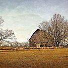 Buzzard Roost Barn in December - Textured Color 1 by Sharlotte Hughes