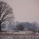 Winterworld by liesbeth