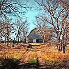 Buzzard Roost Barn in December - Textured Color 2 by Sharlotte Hughes