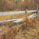 Alberta Ranchlands - Abandoned Corral in Autumn by Jim Sauchyn