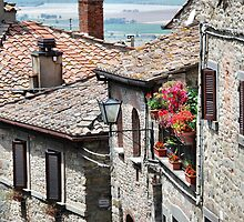 Splash of Color-Cortona, Italy by Deborah Downes