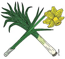 Leek and Daffodil Crossed by RHFay