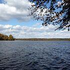 Lake Ontelaunee by Jessica Petrohoy