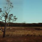Sunburnt Country by Jack Doherty