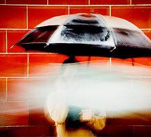 Umbrella by Malgorzata Pioro