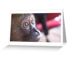 Monkey's Eyes Greeting Card