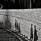 Bricks in the wall by Vincent Riedweg
