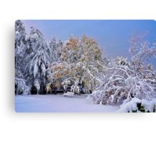 When Seasons Collide Canvas Print