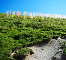 Field of Prayer Flags, IOW  by Rod Johnson