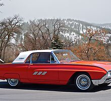 1963 Ford Winter Bird by DaveKoontz