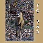 Dad Birthday Greeting Card - Whitetail Deer Buck by MotherNature