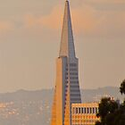 Transamerica Pyramid by fitch