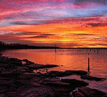 Fiery Sky by Carolyn  Fletcher