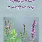 Speedy Recovery Greeting Card - Purple Loosestrife Wildflower by MotherNature