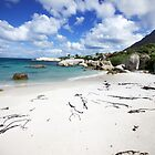 South Africa - Boulders Beach by mattnnat