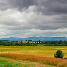 Willamette Valley by Lee LaFontaine