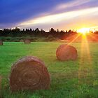 Sunset on Hay Bails by DArthurBrown