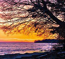 Sandbanks Sunset by PhotosByHealy