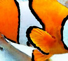 Clown Fish - Clownfish - Tropical Fish by Sharon Cummings