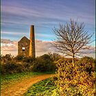 The Stamp Engine House by Peter Sutton
