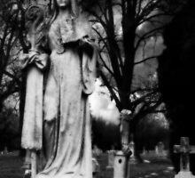 The Garden of Death II by gjameswyrick
