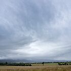 Storm over Tamworth - NSW - Australia by Norman Repacholi