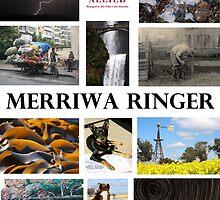 The Winners by MerriwaRinger