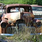 Rusty Wrecks in Rural Settings by DashTravels