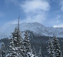 Loveland Pass Winter Wonderland by KimSha