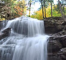 Top Of Shawnee Falls  by Gene Walls